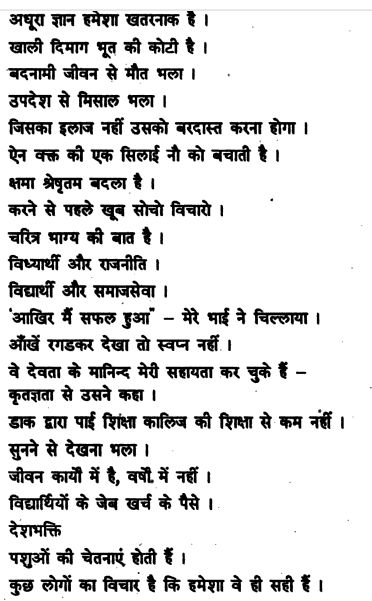 terralia essay friend essay on jawaharlal nehru in punjabi language translator