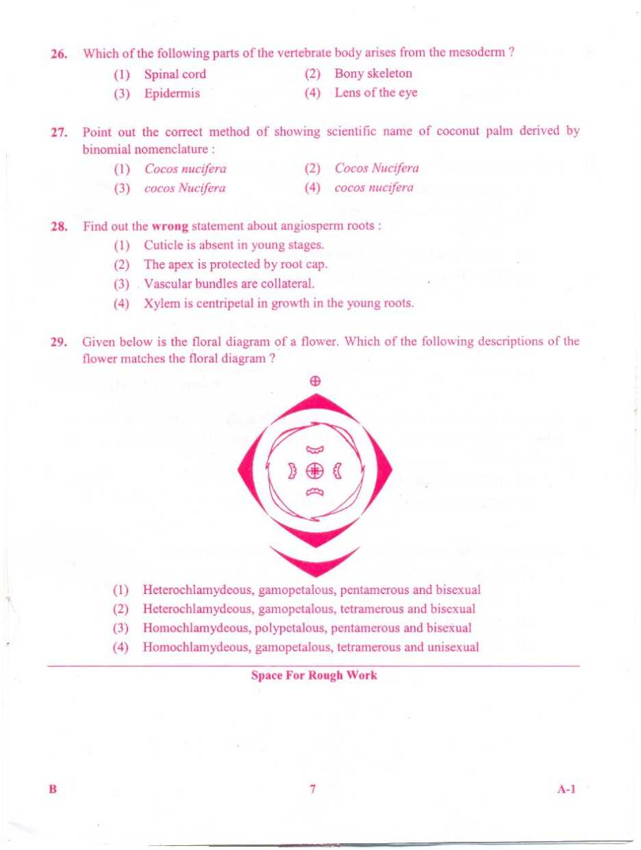 TANCET EXAM STUDY MATERIALS HUGE COLLECTION (PDF) FREE DOWNLOAD