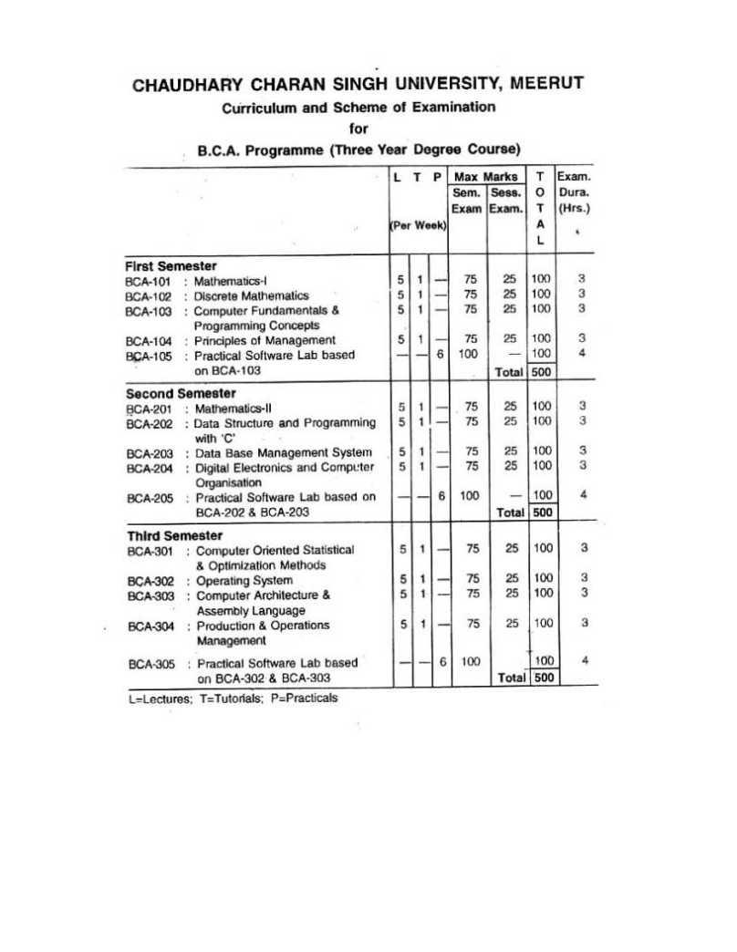 CCS University Meerut BCA 1st semester sample papers - 2018-2019