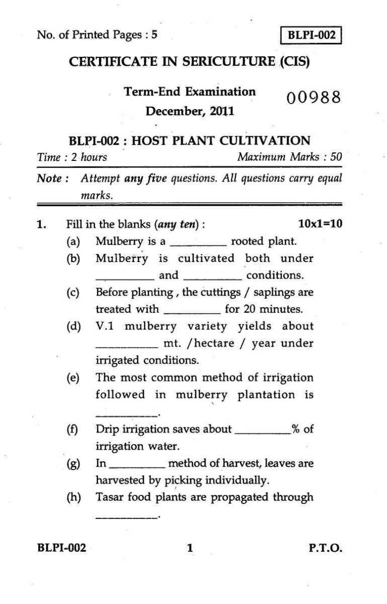 essay plant review questions
