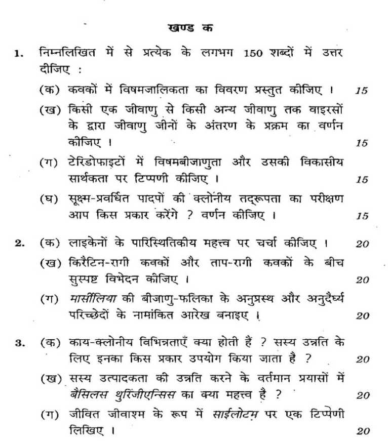 upsc political science mains question papers 2010
