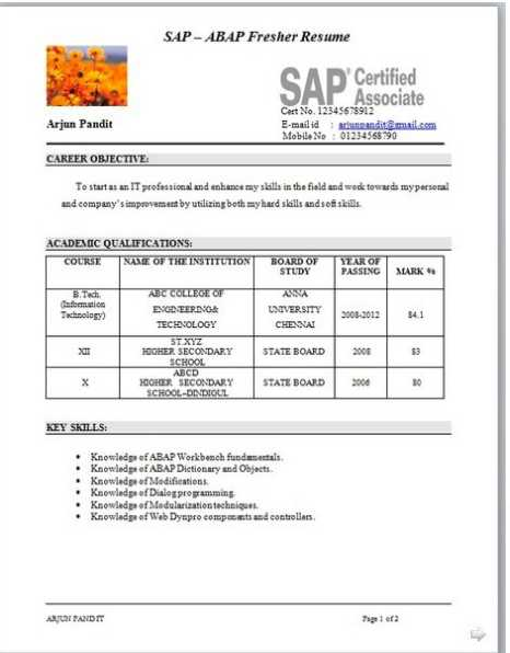 28 resume models for mba resume templates fresher