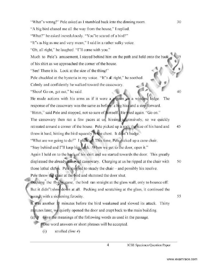 Essays for class 8 icse - English Essay Writing (Paper I