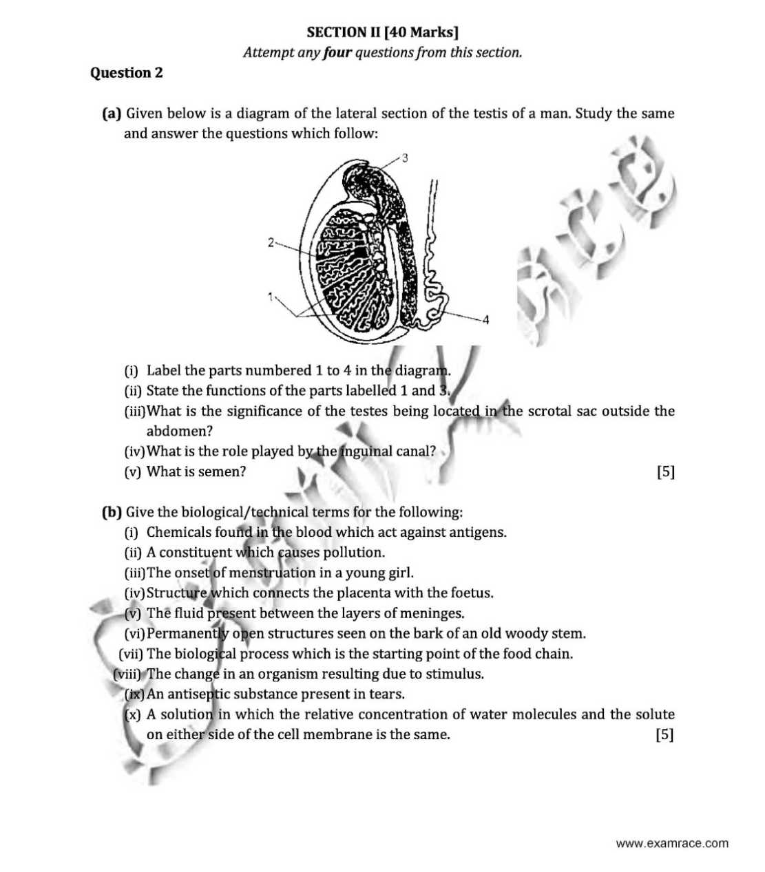 ap biology essay questions from previous years Ap biology is among the most popular advanced placement tests put forth by college board each year for high school students the test was designed to challenge and motivate students to further expand on their passion for the subject of biological sciences.